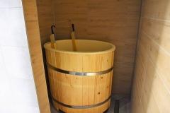 5_sauny